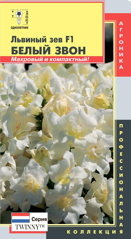 Белый львиный зев цветов