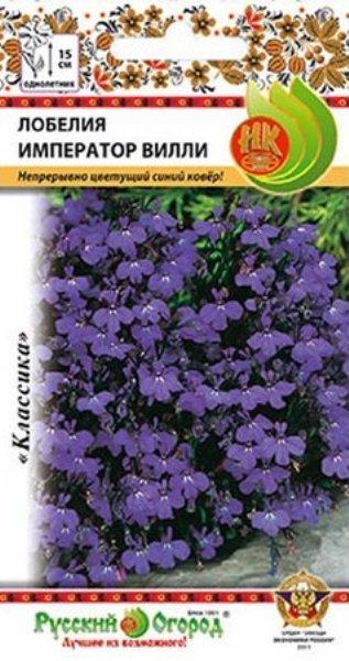 Цветы лобелия император вилли