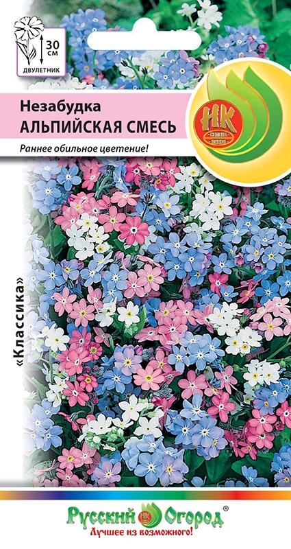 Цветы незабудка альпийская