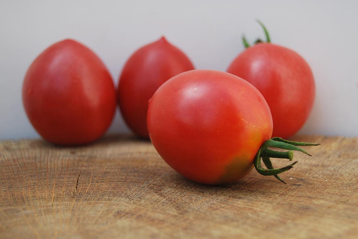 платят тысячи славянка томат отзывы и фото этот раз фолловеры