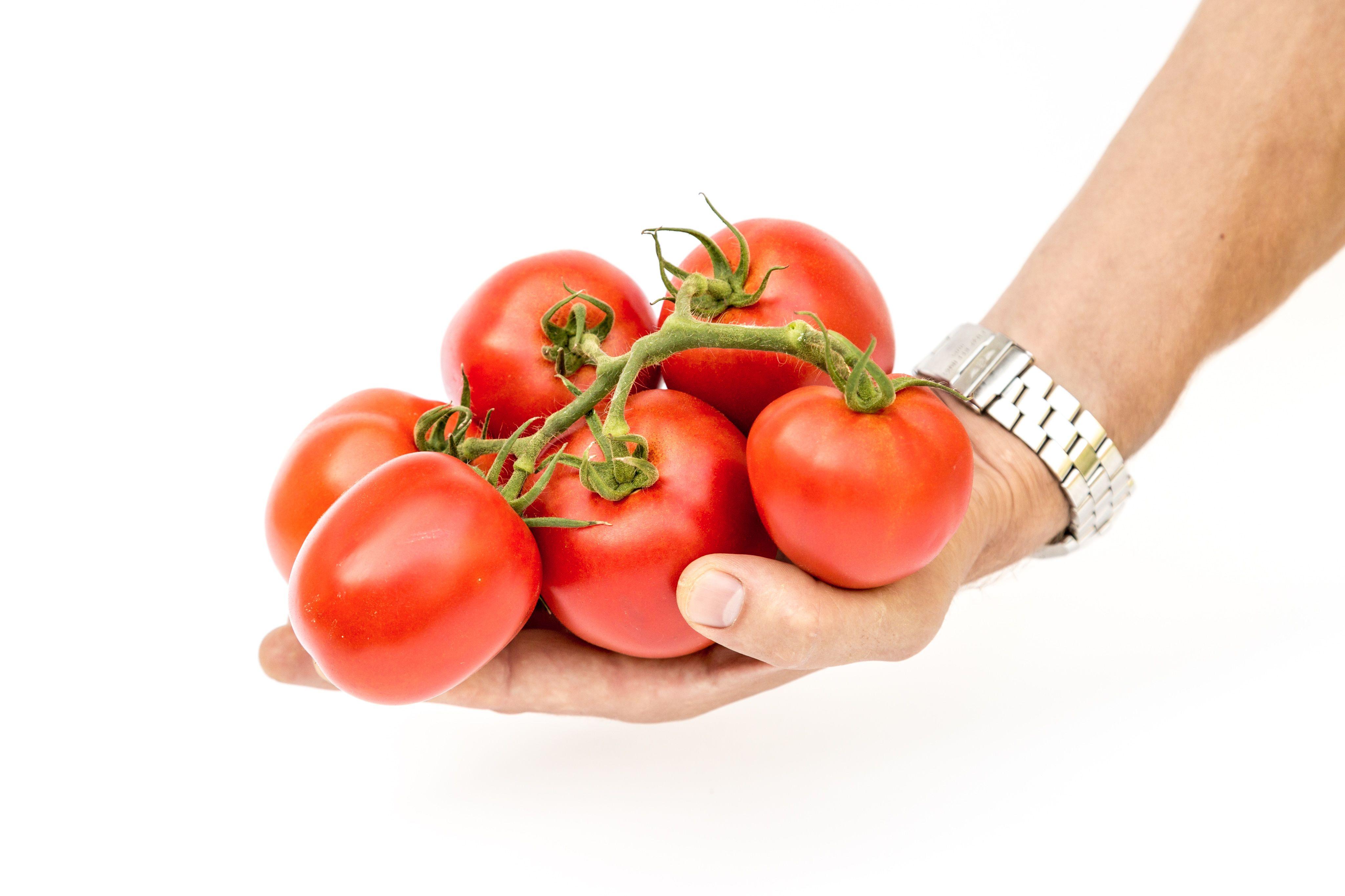 семена партнер в самаре купить